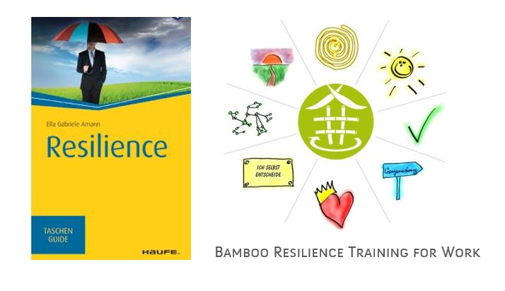 Resilience-Haufe-Pocket-Guide