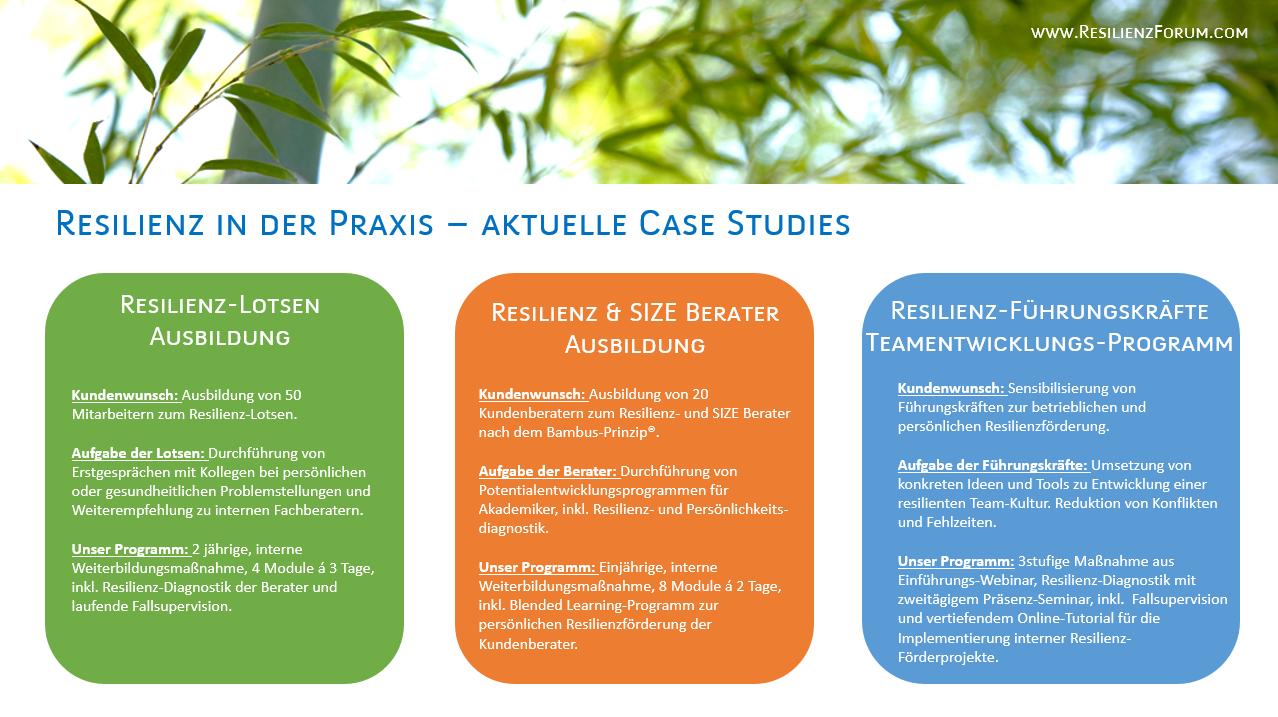 Resilienzförderung_Case Studies_ResilienzForum