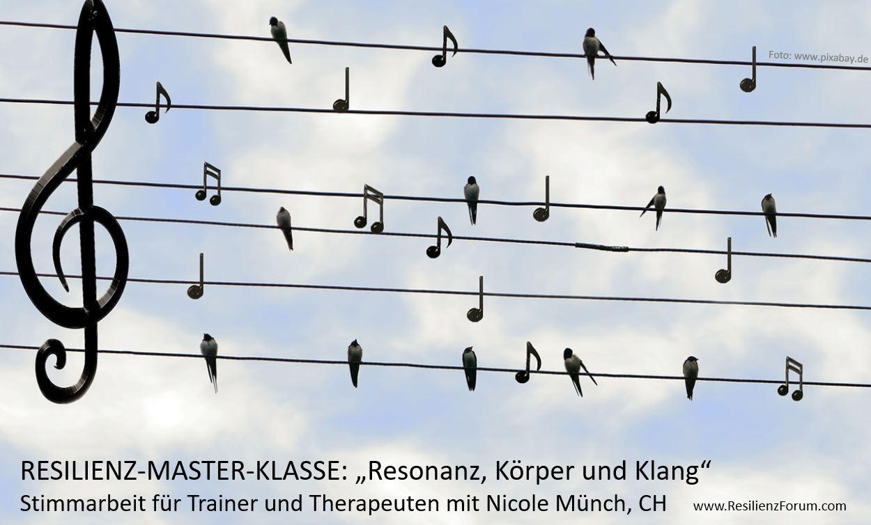 Resilienz-Master-Klasse Resonanz mit Nicole Münch